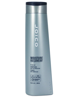 Joico Moisture Recovery Conditioner Outlet
